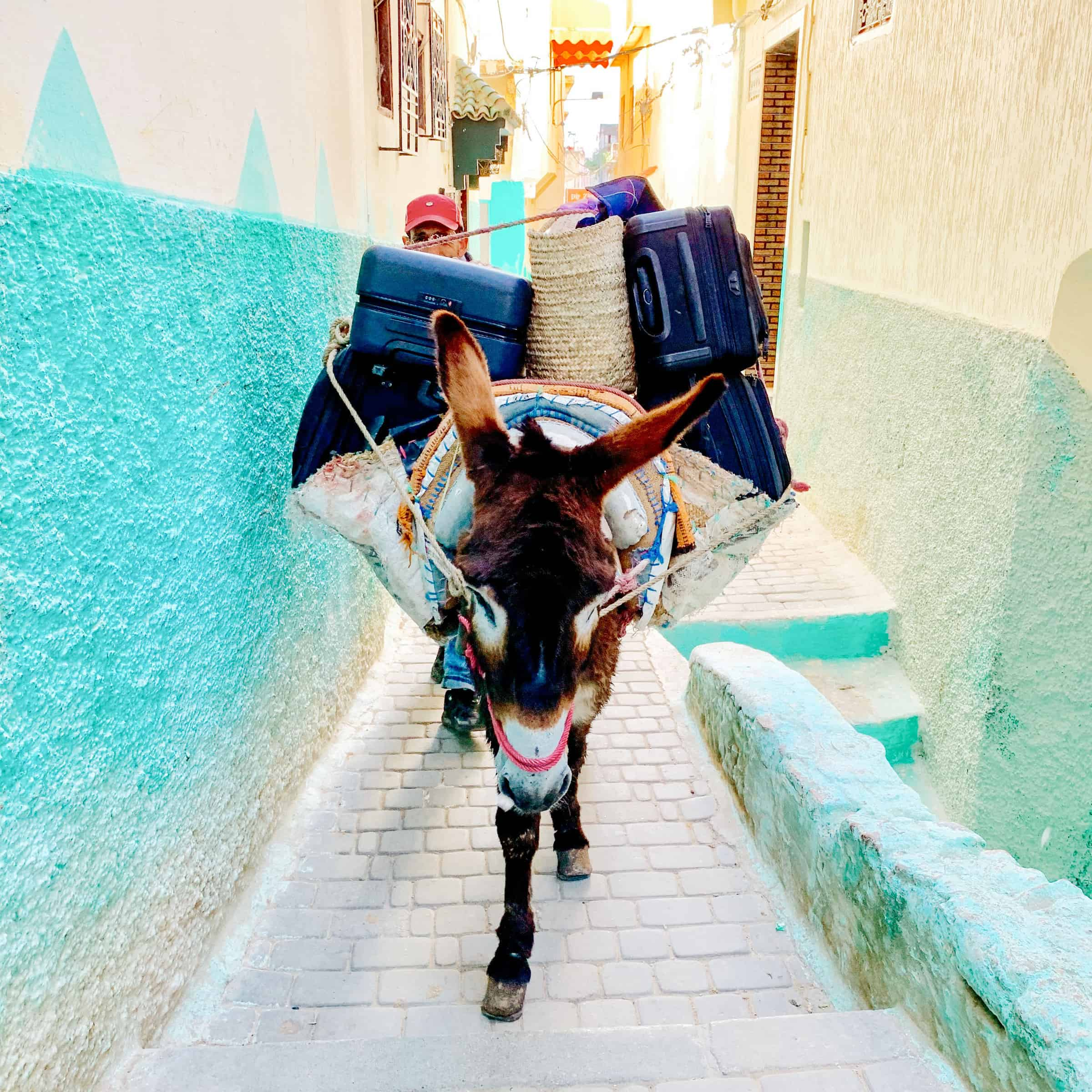 Lizzie & Kathryn's Guide To Fez, Morocco 20